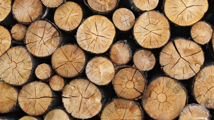 Le bois de chauffage séches empilées